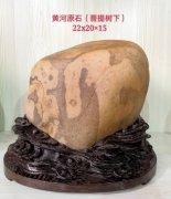 每日一石:黄河石《 菩提树下 》雅赏 图
