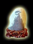 石界•篝火燃起的激情 组图