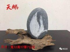 梅玺堂/全国免费奇石展示(第66期节选)