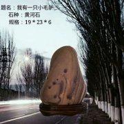 中、韩奇石展同台亮相!结友谊传播赏石文化