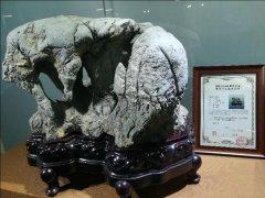 《赏石之路》节目跟踪报道~中国观象拍卖会