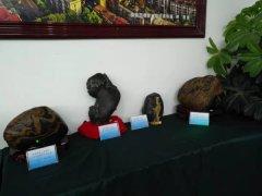 娄底市首届宝玉石观赏石文化博览会盛大开幕!