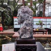 中国天津首届运河杯赏石艺术展精品美石欣赏