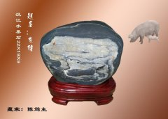 汉江奇石五彩缤纷 十二生肖惟妙惟肖 图