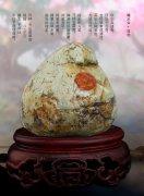 《于公赏石》为石友提供石界精彩信息(续)