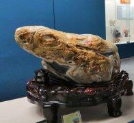 闪亮登场的新贵石种 值得收藏的新奇美玉 图