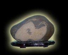 天然奇石——忙碌心灵的栖息地 图