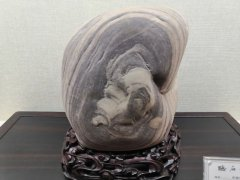 河洛大地耀眼的璀璨明珠——《听石馆》 图