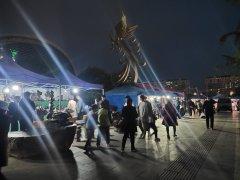 2021中国淮南凤台观赏石博览会开幕