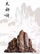 赏石名家王天然的藏品欣赏 (图)