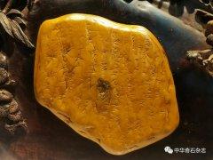 2021第三届中国(杭州)赏石艺术节暨第二届黄蜡石文化艺术节开幕